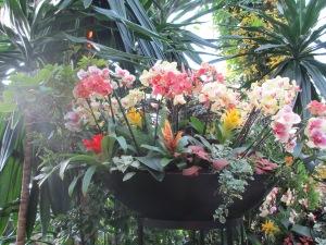 Kew Gardens 055